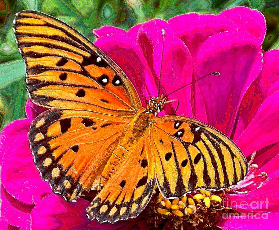 Butterfly Photograph - Orange Beauty by Annette Allman