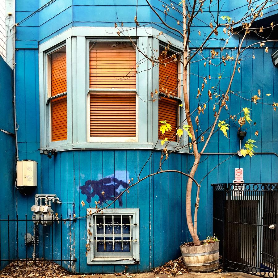 Blue House Photograph - Orange Blinds by Julie Gebhardt
