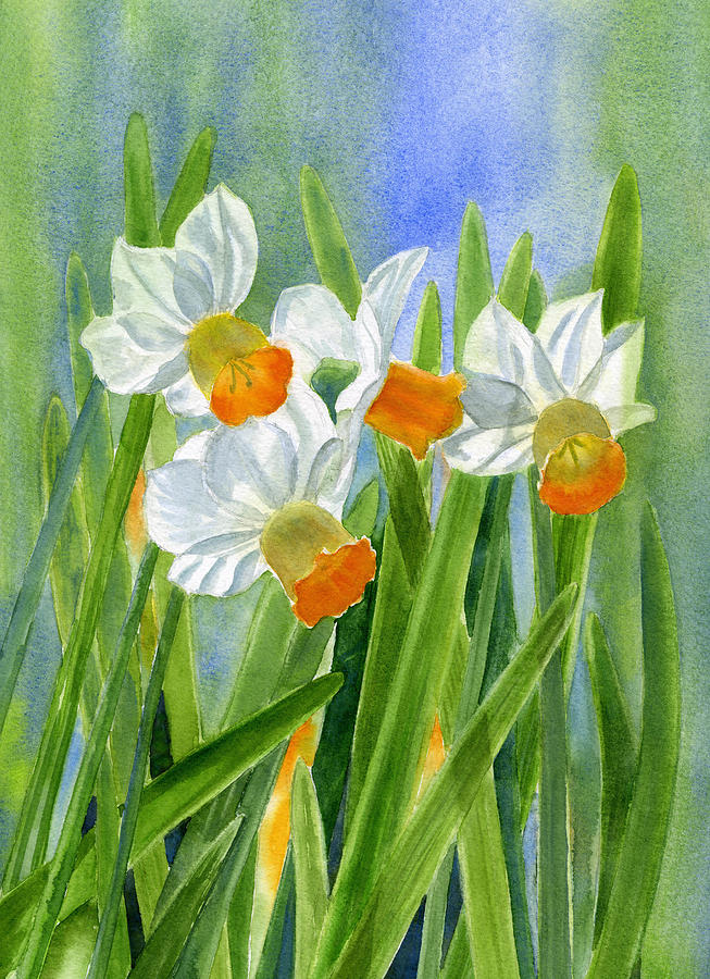 Daffodils Painting - Orange Daffodils With Background by Sharon Freeman