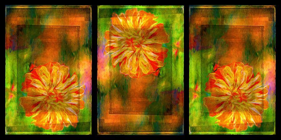 Flower Photograph - Orange Flower Triptych by Alice Gipson