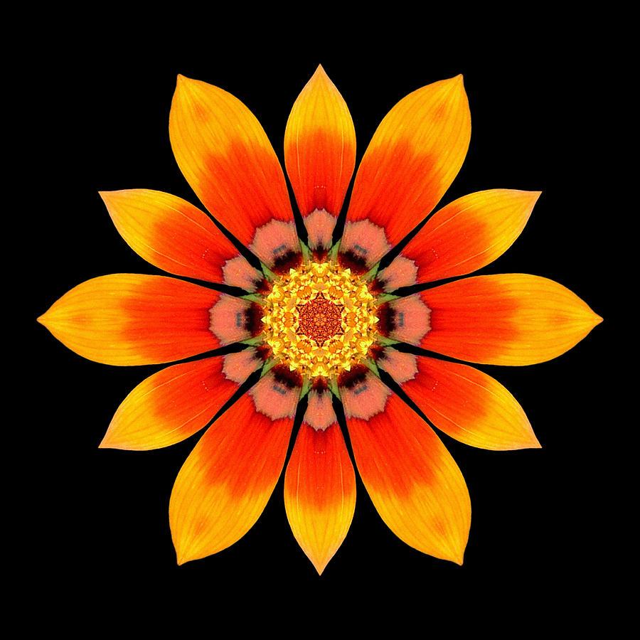 Flower Photograph - Orange Gazania I Flower Mandala by David J Bookbinder