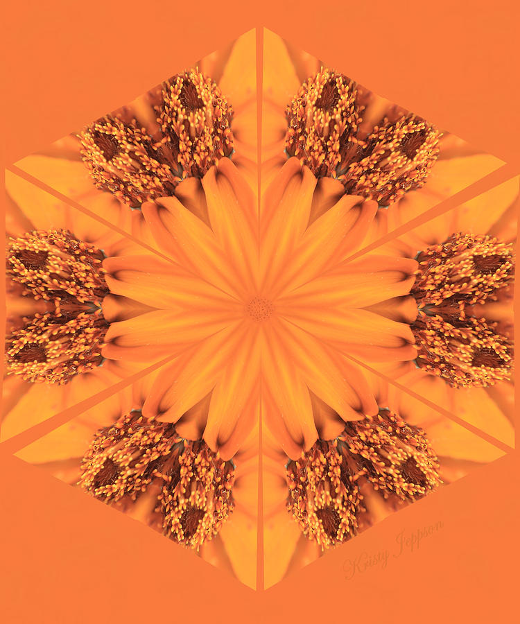 Orange Kaleidoscope by Kristy Jeppson