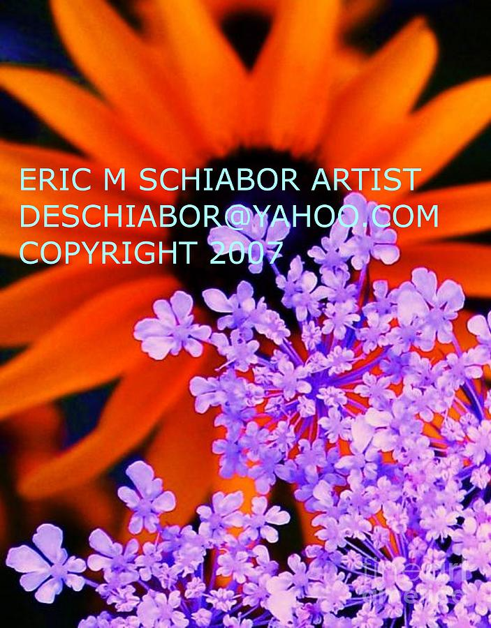 Orange Photograph - Orange Lavender Flower by Eric  Schiabor