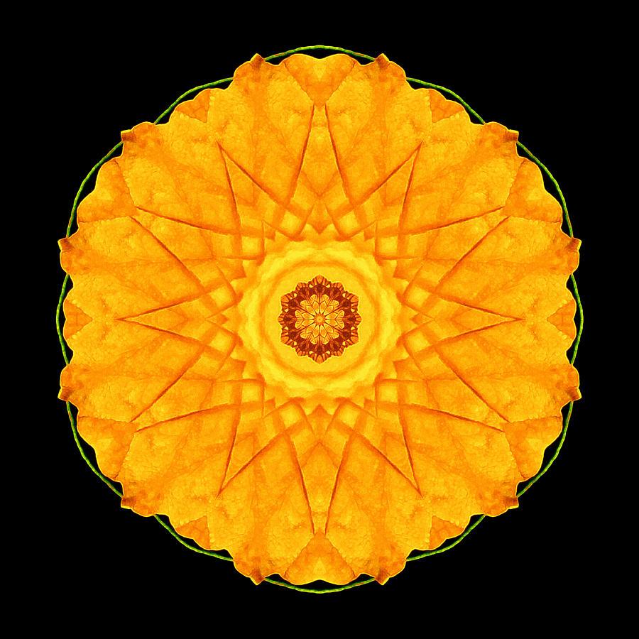 Flower Photograph - Orange Nasturtium Flower Mandala by David J Bookbinder