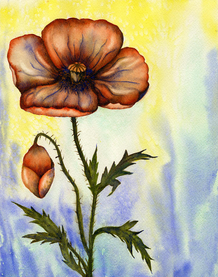Poppy Painting - Orange Poppy by Diane Ferron