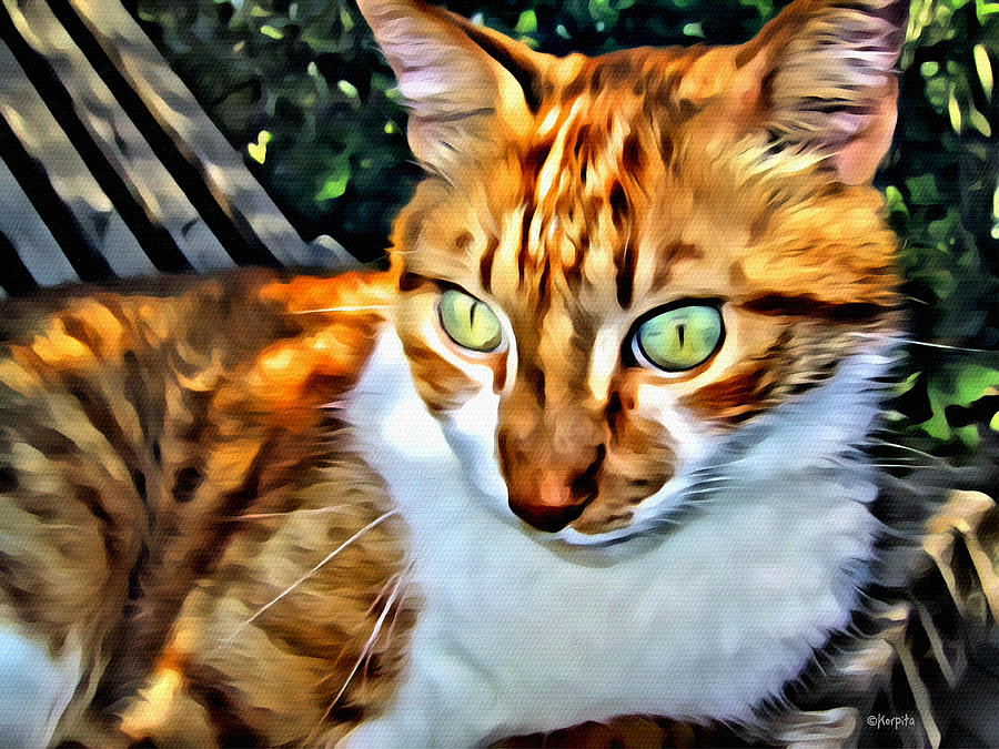 Golden Tabby Cat With Green Eyes