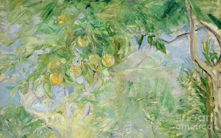 Oranges Painting - Orange Tree Branches by Berthe Morisot
