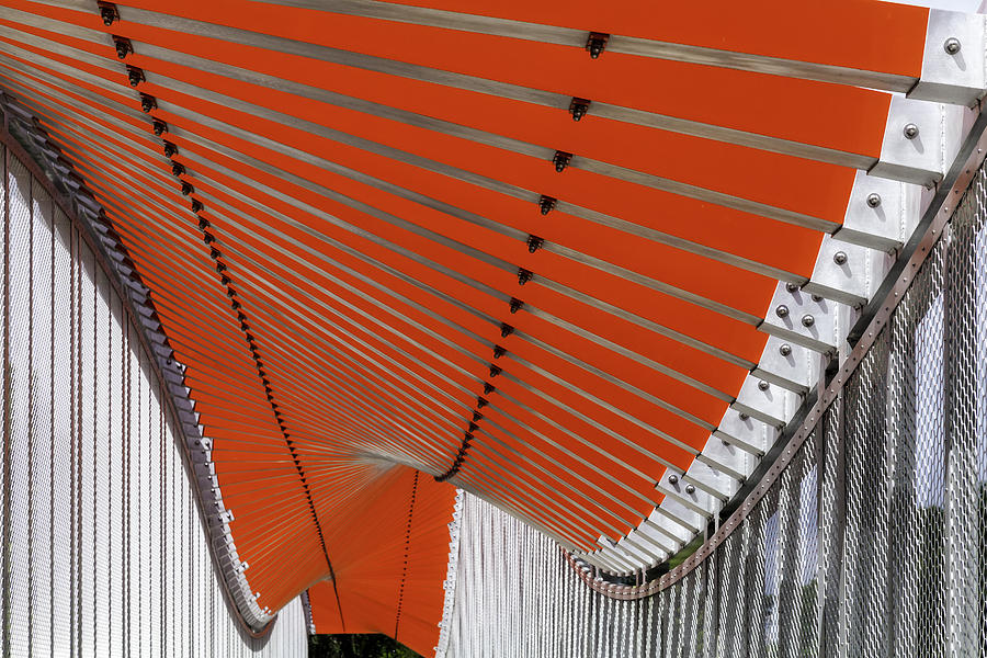 Orange Undulations by Lynn Palmer