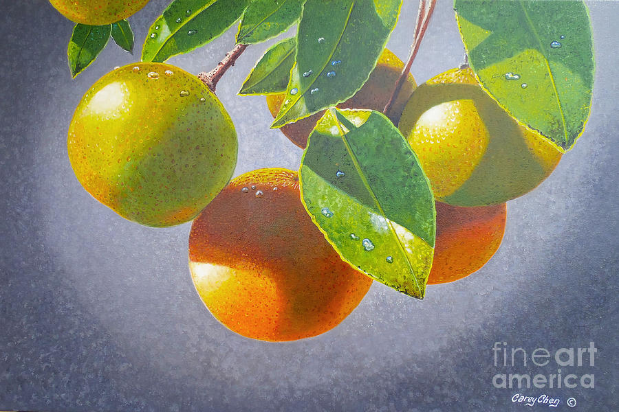 Oranges Painting - Oranges by Carey Chen
