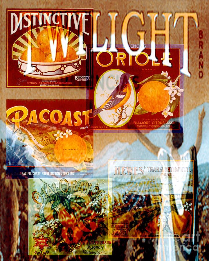 Collages Digital Art - Oranges by David Mendoza