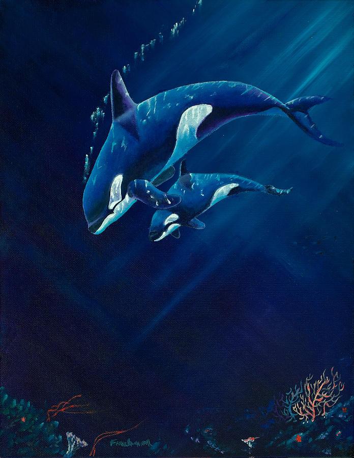 Orca And Baby Douglas Fincham Anatomie