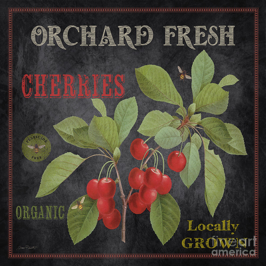Orchard Fresh Painting - Orchard Fresh Cherries-jp2639 by Jean Plout