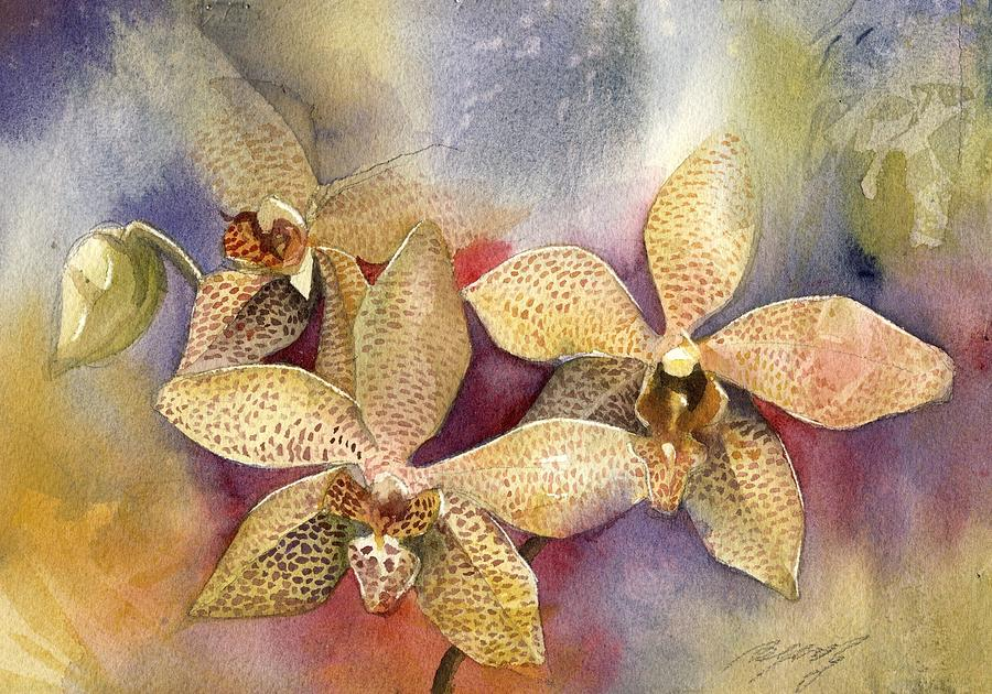simple orchids paintings - 900×630
