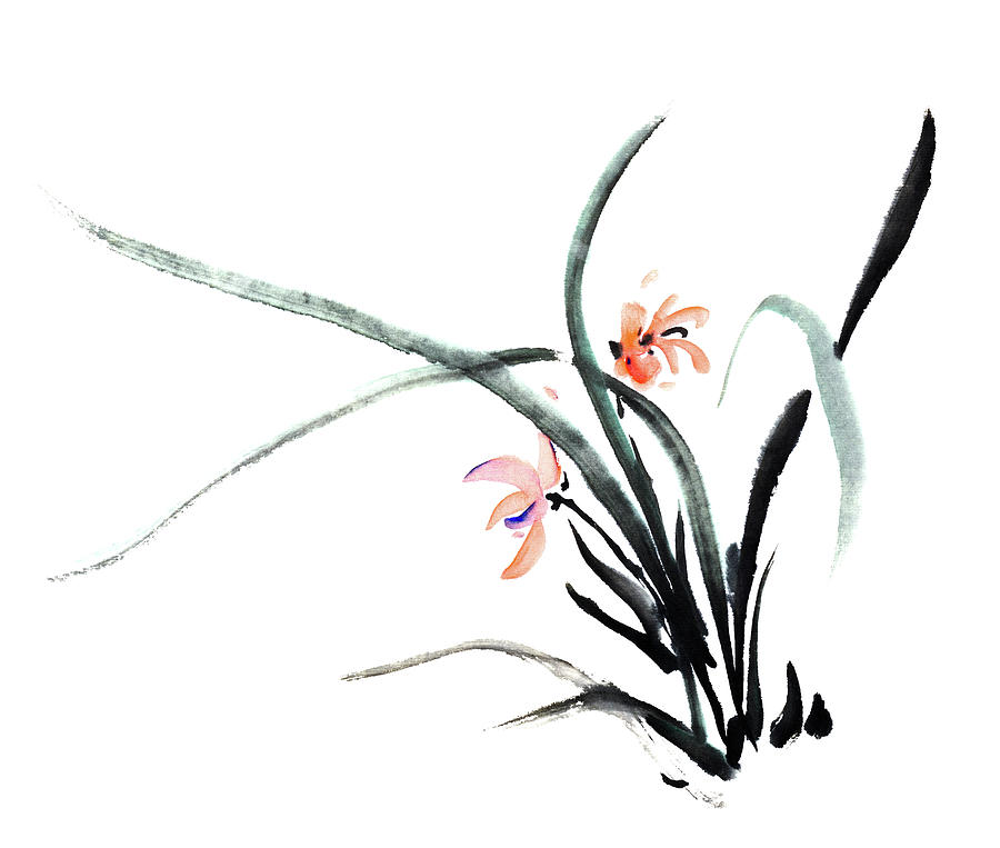 Orchid Digital Art by Vii-photo