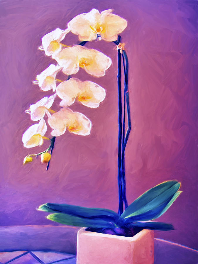 simple orchids paintings - 675×900