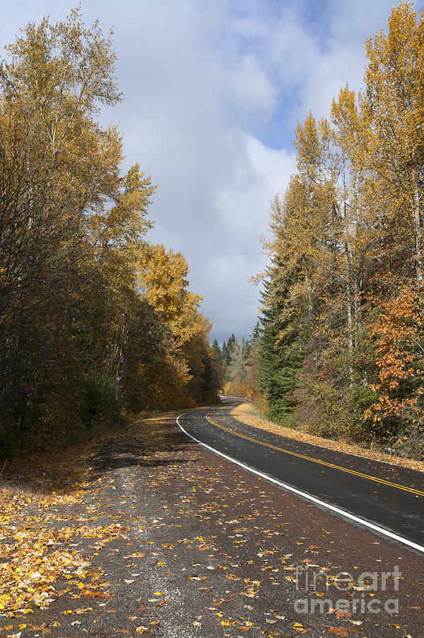 Autumn Photograph - Oregon Autumn Highway by Peter French