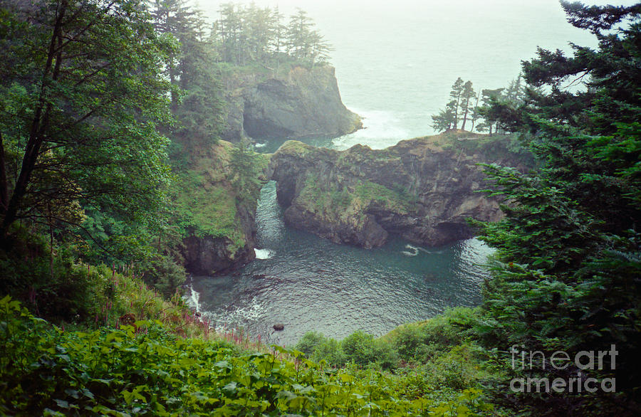 natural bridge chatrooms Review our travel destinations and guides to help you plan the best spots to go  on vacation got places to go learn how to do it on the cheap here.