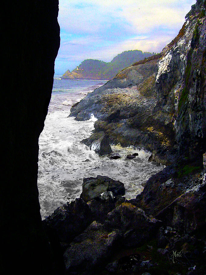 Oregon Coast Seal Beach Photograph