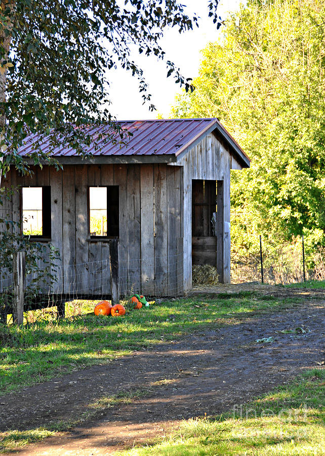 Covered Bridge Photograph - Oregon Covered Bridge by Mindy Bench