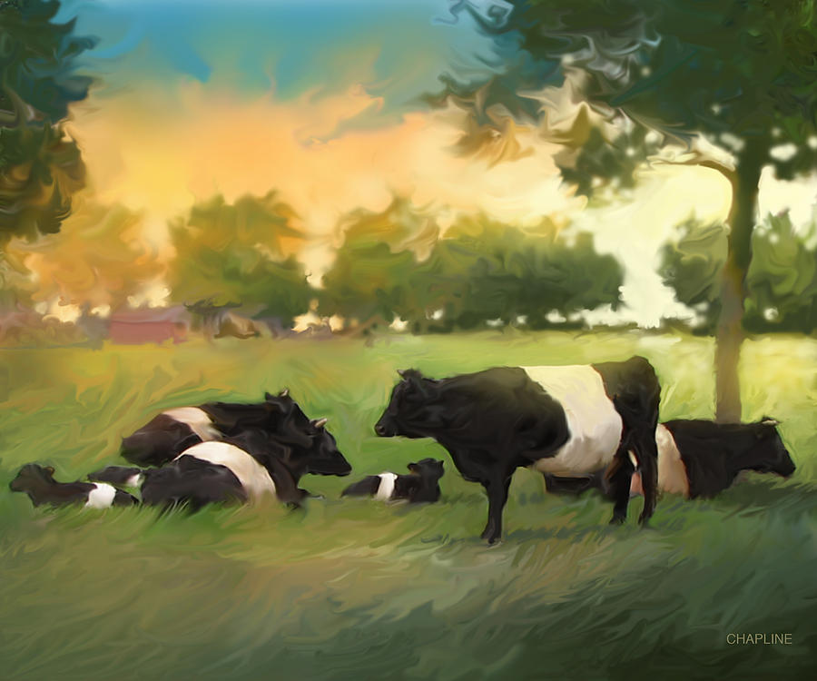 Oreo Cows by Curtis Chapline