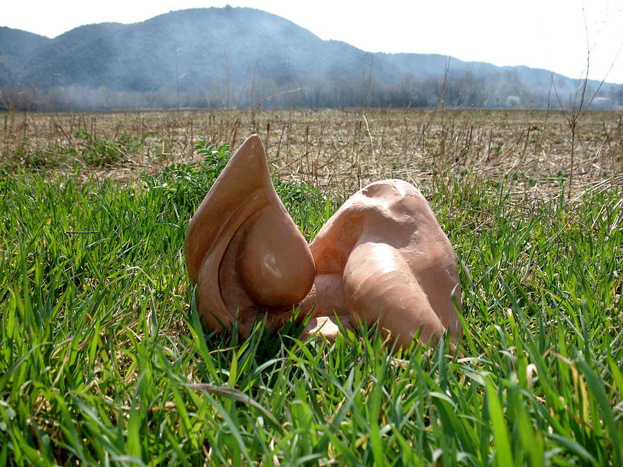 Figurative Sculpture Sculpture - Organic 1 by Flow Fitzgerald