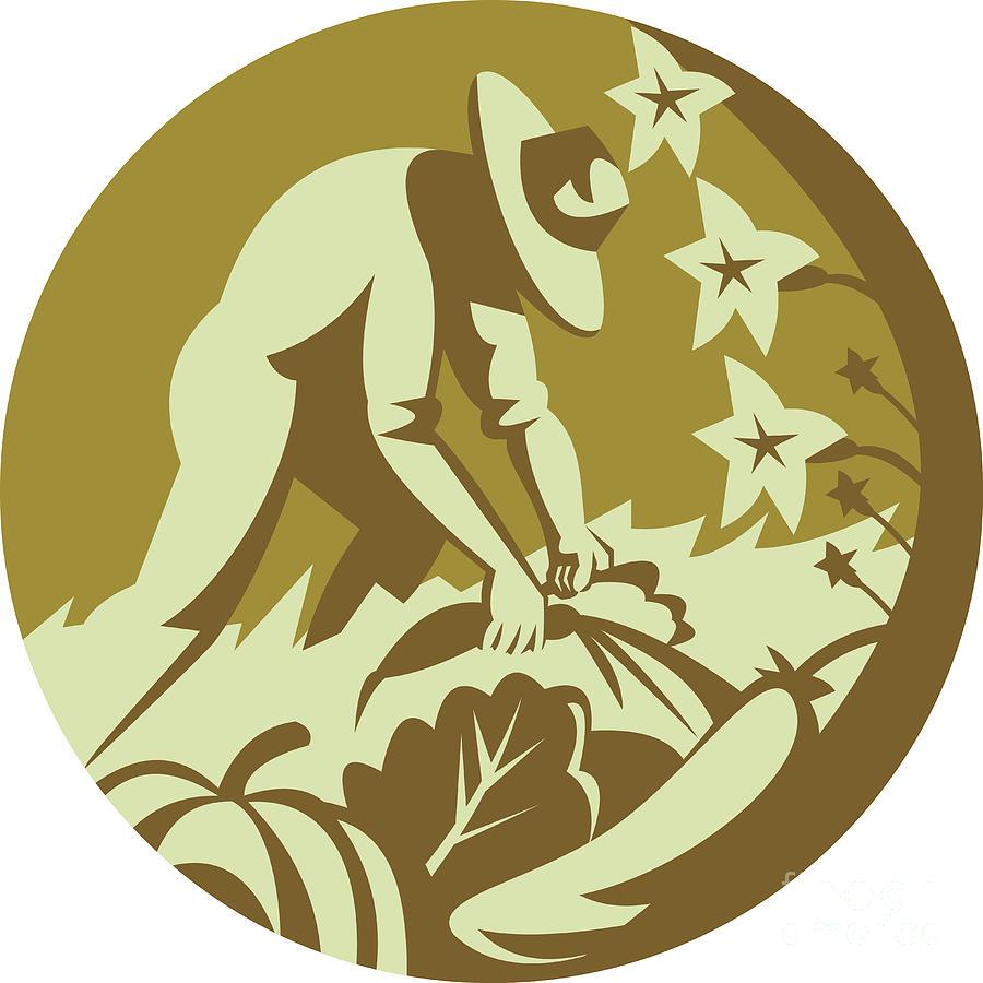 Organic Digital Art - Organic Farmer Harvesting Vegetable Crops Retro by Aloysius Patrimonio