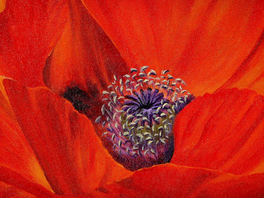 Poppy Painting - Oriental Poppy by Jo Appleby