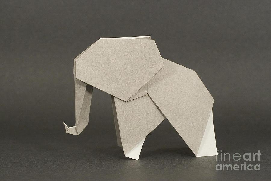 Origami Elephant Photograph By Nobi Nagase