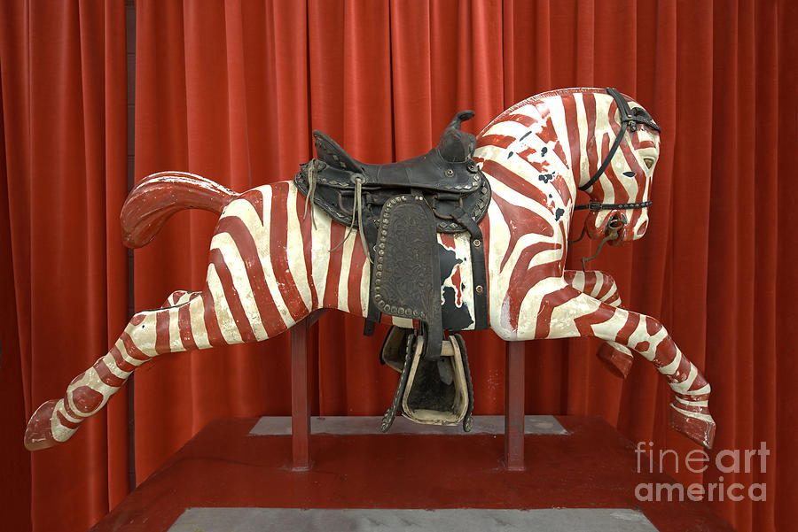 Amusement Photograph - Original Zebra Carousel Ride by Liane Wright