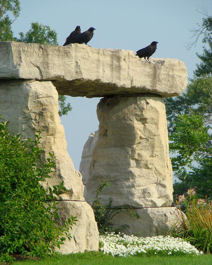 Rocks Photograph - Ornamental Crows by Gothicrow Images