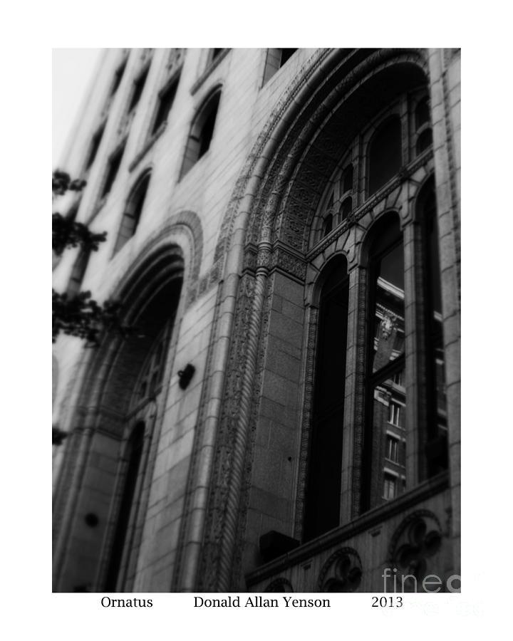 Window Photograph - Ornatus by Donald Yenson
