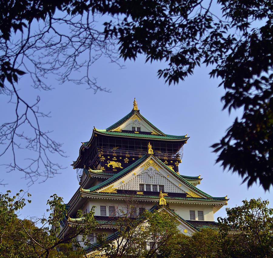 Osaka Castle Photograph - Osakajou framed by branches by Baato