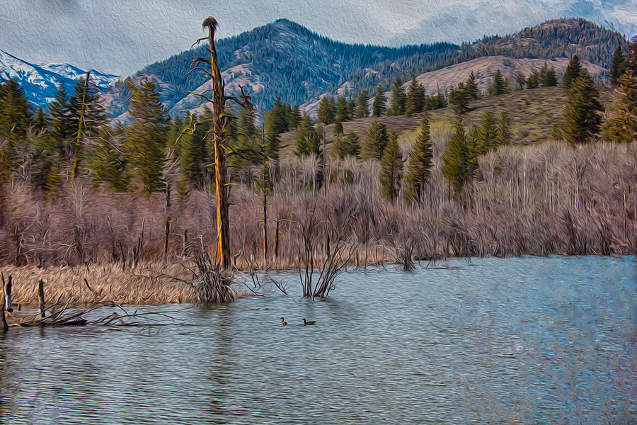 North Cascades Painting - Osprey Nest In A Beaver Pond by Omaste Witkowski