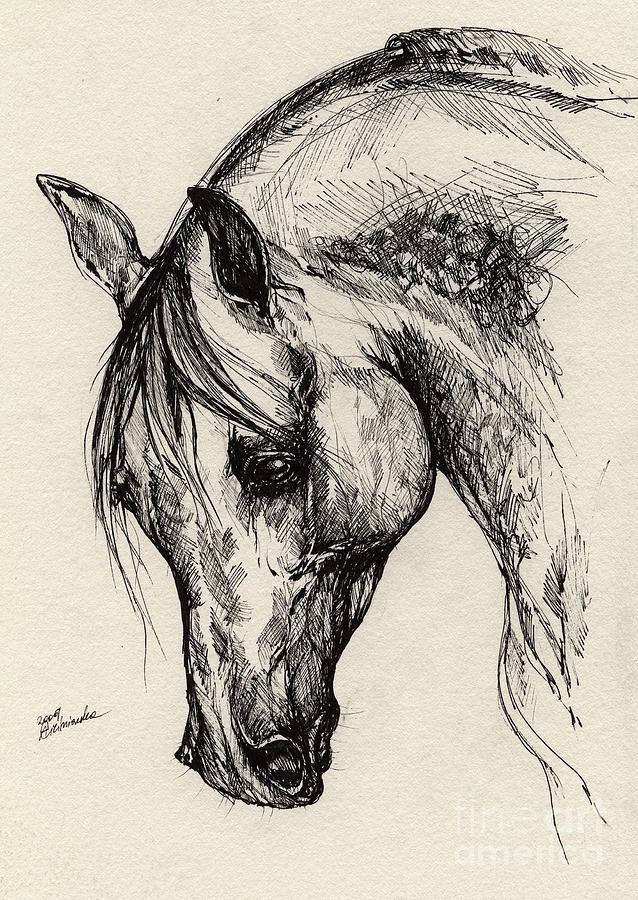 Polis Drawing - Ostragon by Angel  Tarantella