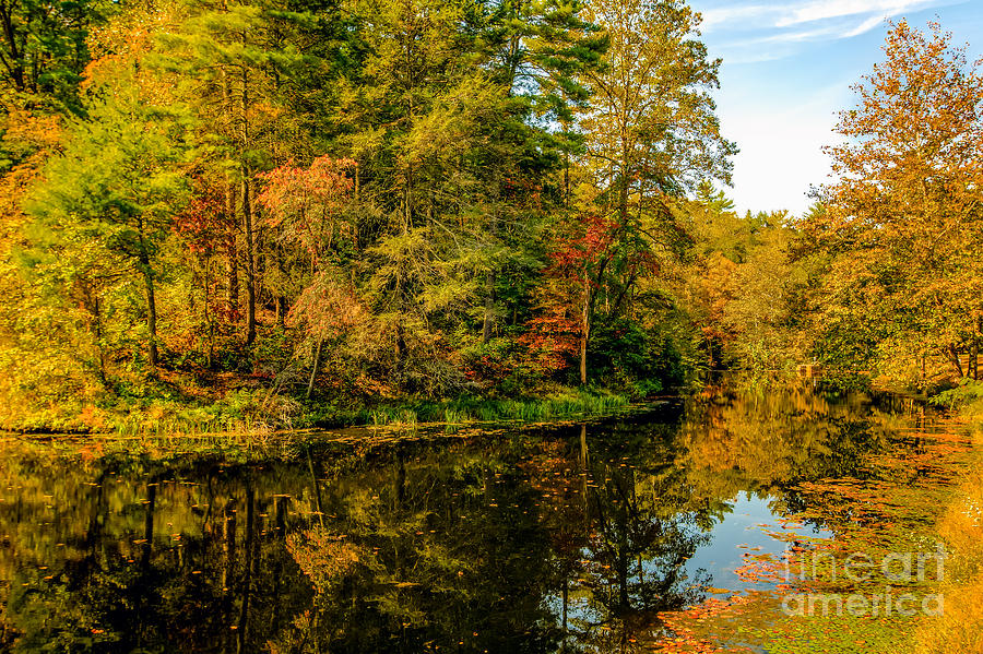 Blue Ridge Parkway Photograph - Otter Lake In The Fall by Mark East