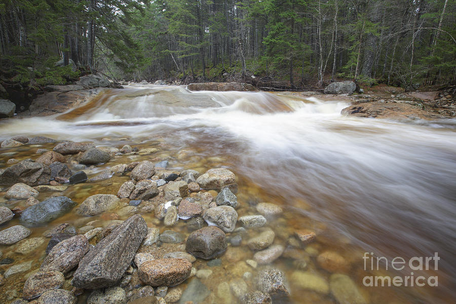 White Mountain National Forest Photograph - Otter Rocks - White Mountains New Hampshire Usa by Erin Paul Donovan