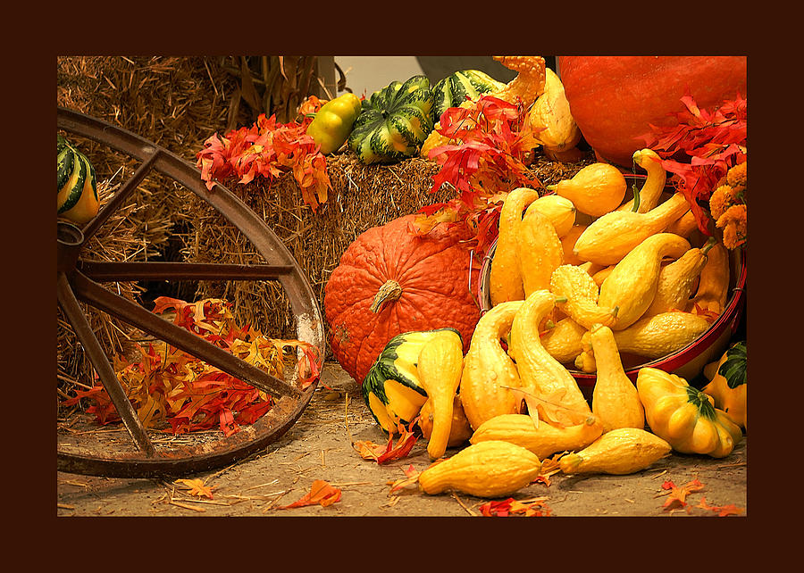 Still Life Pyrography - Our Harvest Today by Lena Wilhite