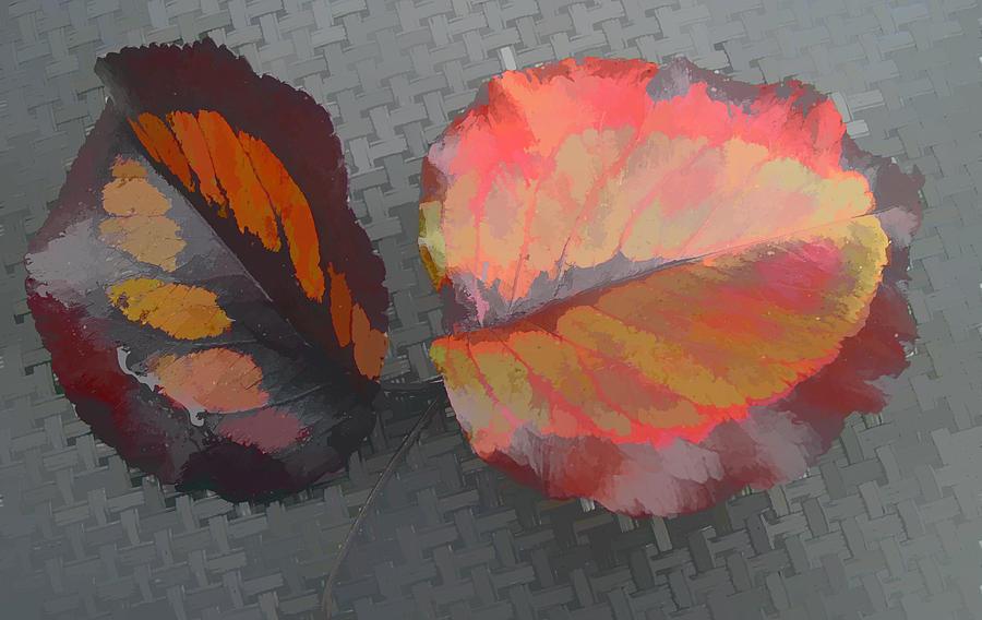 Leaves Digital Art - Our Makers Palette by Barbara McDevitt