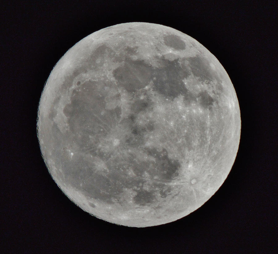 The Moon Photograph - Our Moon by Thomas  MacPherson Jr