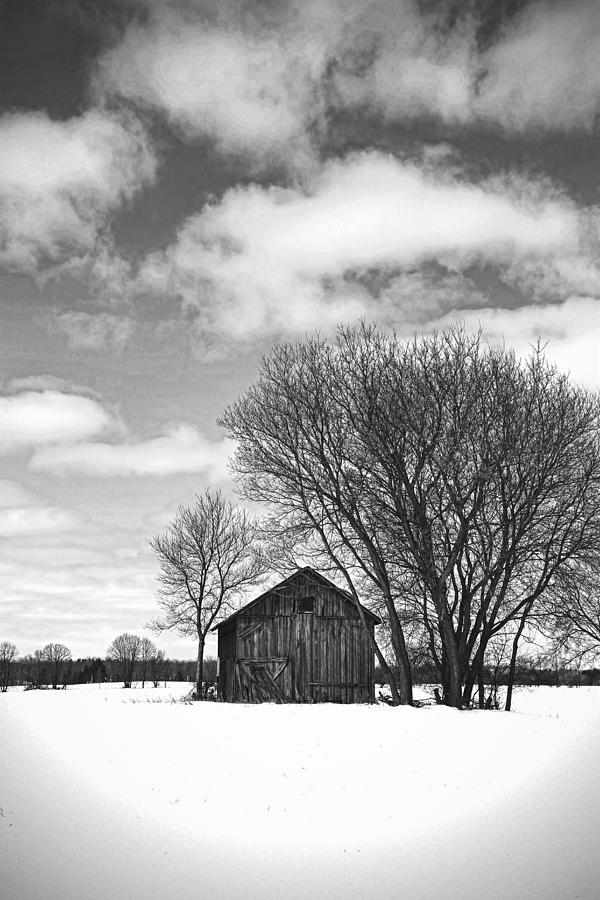 Old Farm Building Photograph - Out In The Sticks by Thomas Young