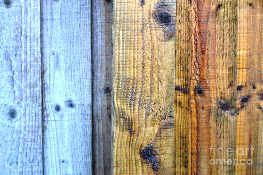 Wood Photograph - Out With The Old In With The New by Aqil Jannaty