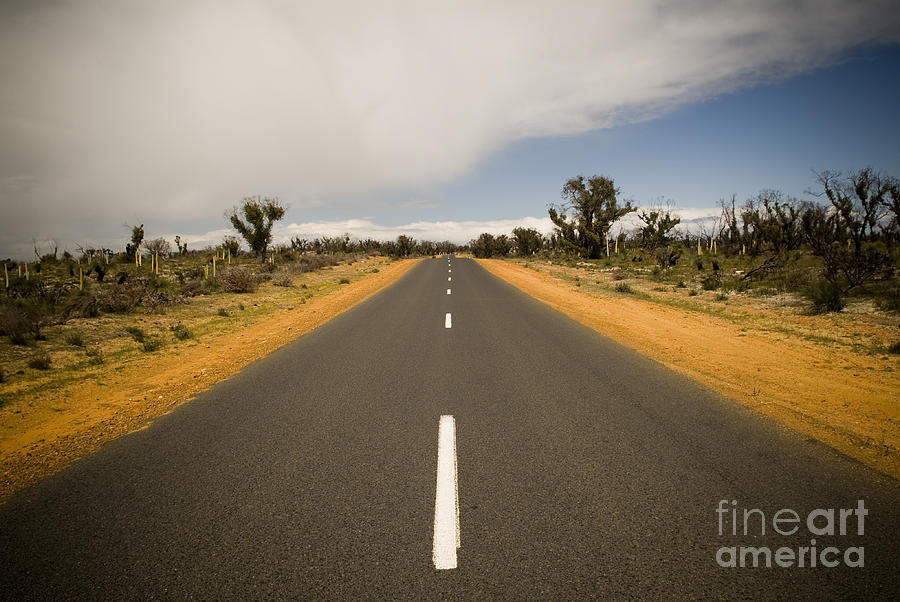 Dry Photograph - Outback Road by Tim Hester