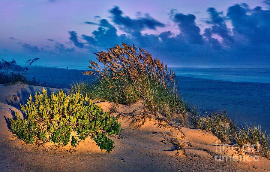 Outer Banks Photograph - Outer Banks - Ocracoke Sand Dunes Oats Sunrise by Dan Carmichael