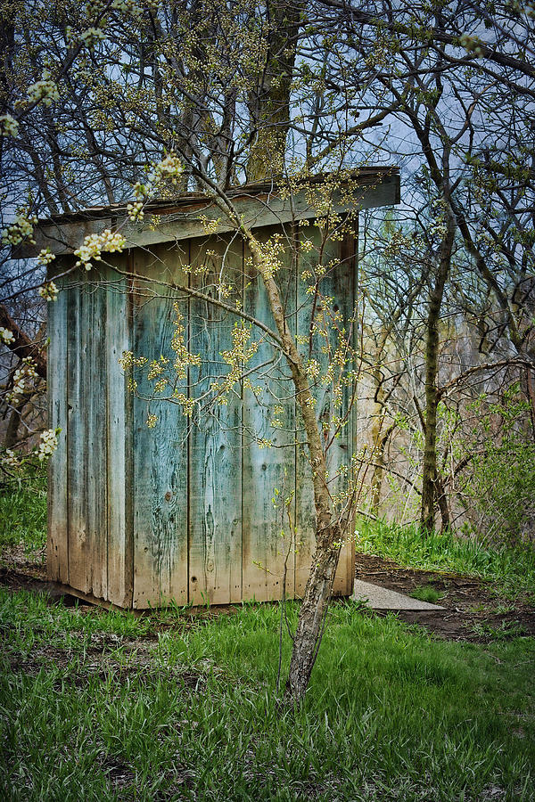 Outbuildings Photograph - Outhouse In Spring by Nikolyn McDonald