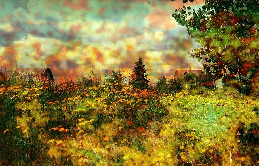 Scenery Photograph - Over In The Meadow 1 by Shirley Sirois