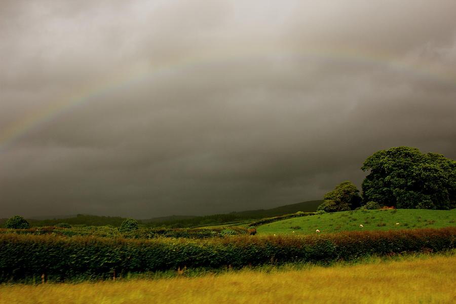 Rainbow Photograph - Over The Rainbow by Theresa Selley