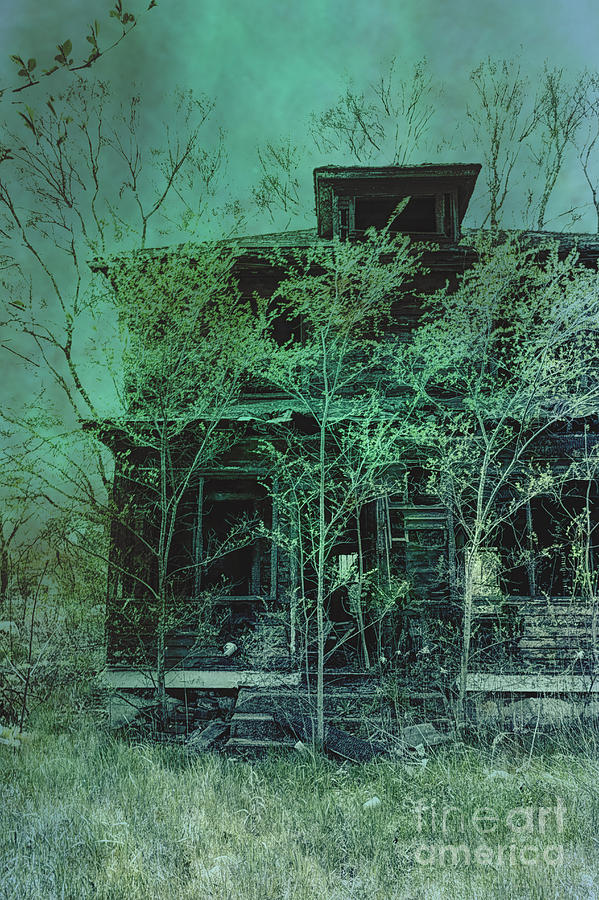 House Photograph - Overgrown by Margie Hurwich