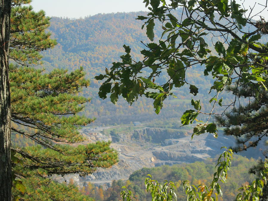 Trees Photograph - Overlooking An Old Quarry by Sarah Manspile