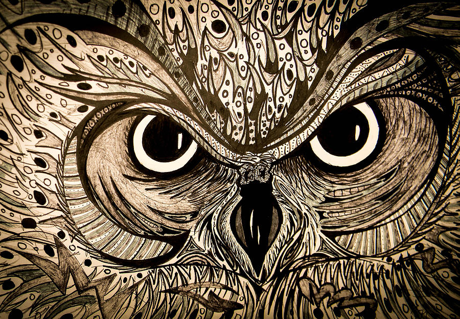 Owl Eyes Drawing By Nathan Newman