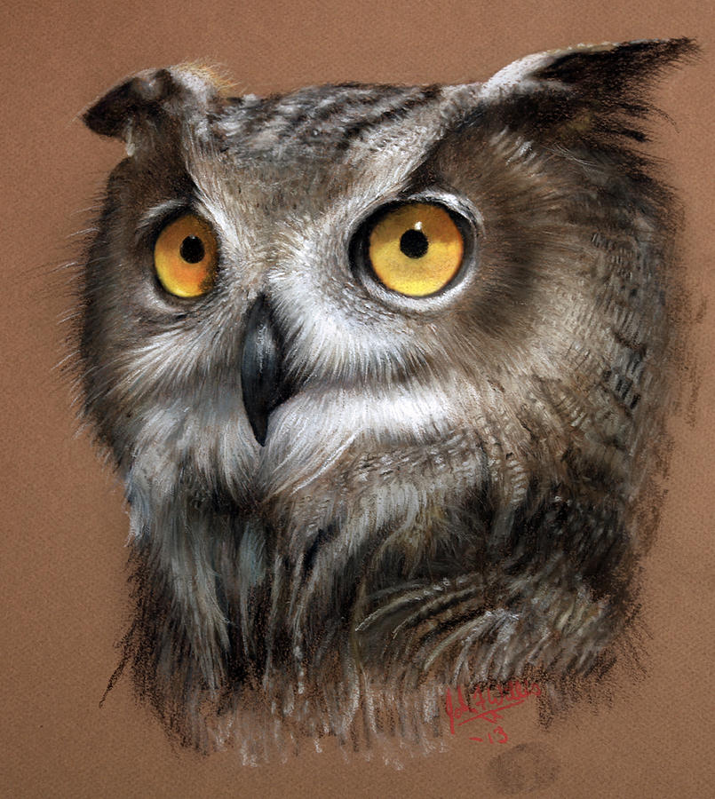 Owl Painting By John F Willis